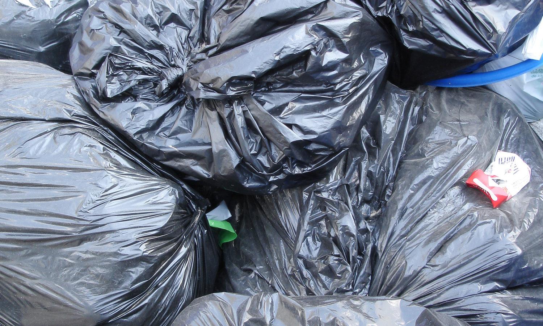 Hire a Trash Removal Company